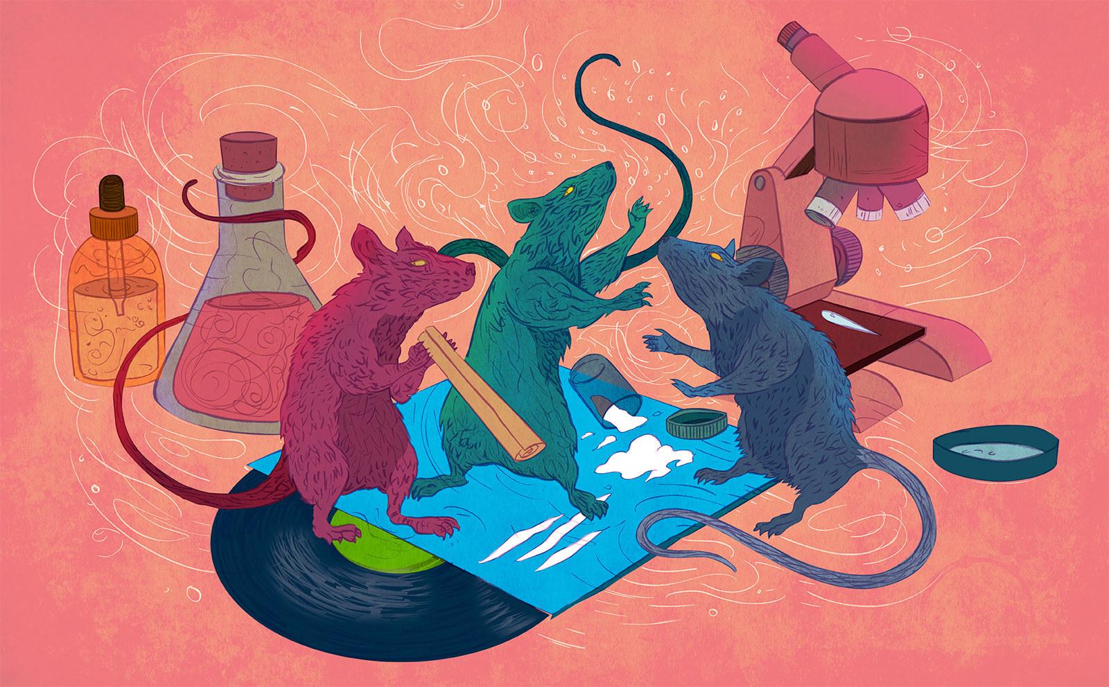 Drug addict lab rats
